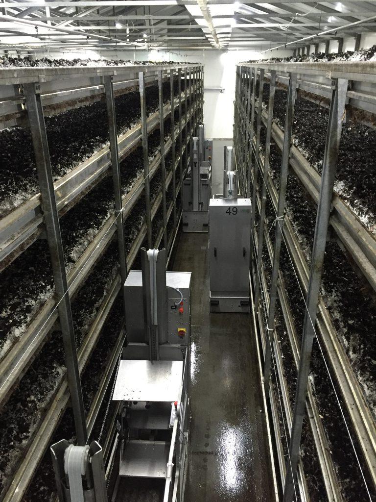 Regały uprawowe oraz wózki do zbioru w pieczarkarni