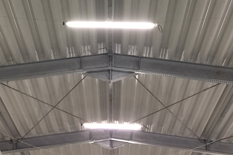 Dwie świetlówki LED 49W zamontowane w pieczarkarni