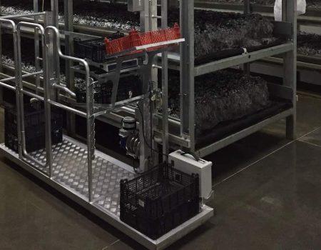 Wózek zbieracza pieczarek NEWTON z elektrycznym napędem stałym