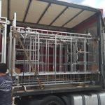 Wózki do zbioru pieczarek NEWTON załadowane do ciężarówki