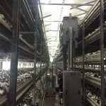 Hydraulic picking lorry PASCAL series in the mushroom farm
